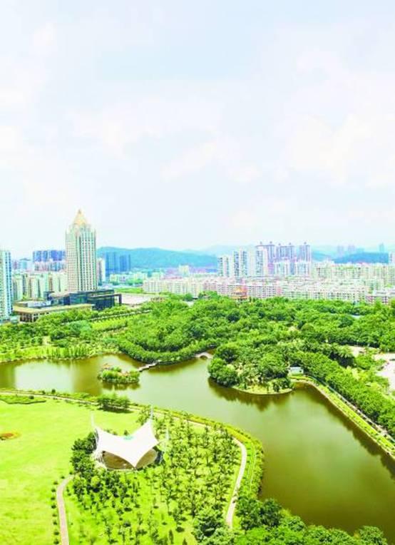 改革与创新带来的另一个收益是,深圳风景园林行业由此获得了