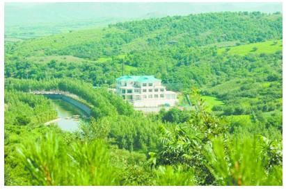 """凌海市""""吴楚庄园""""用绿色诠释生态文明"""